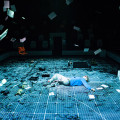 curious-incident-05.jpg